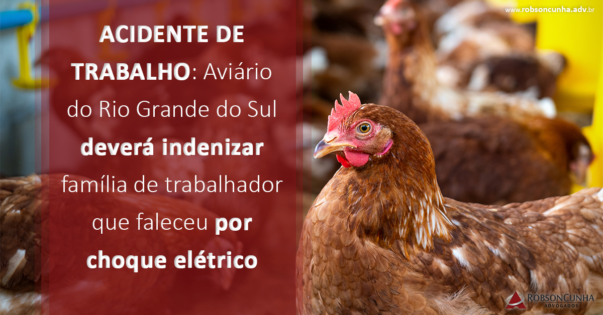 ACIDENTE DE TRABALHO: Aviário do Rio Grande do Sul deverá indenizar família de trabalhador que faleceu por choque elétrico